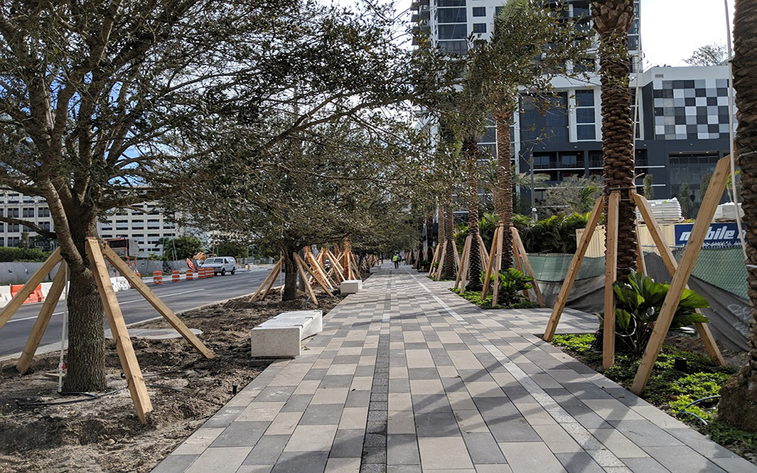 First Shade Trees Planted At Miami Worldcenter's New 7th Street Promenade As Developer Prepares To Build On All Sides